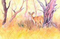 Animal, Watercolor painting of a deer standing near bare trees