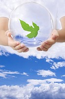 Lohas, Environmental Conservation, Digitally generated image of human hands holding a sphere with green leaf in blue sky