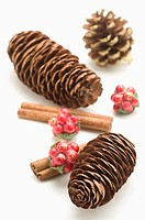 Pine Cones and cinnamon canes