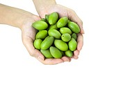 Olives in hand (thumbnail)