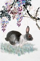 Chinese Fine art, Traditional Chinese Painting, Year Of The Rabbit