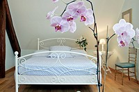 BED BREAKFAST AND GITE ´LE COLOMBIER´, HANCHES, EURE_ET_LOIR 28, FRANCE