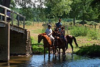 HORSEBACK RIDING BY THE RIVER, SAINT_MAUR_SUR_LE_LOIR 28, FRANCE