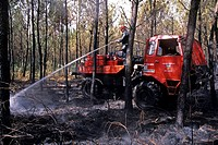 FOREST FIRE TANK ENGINE AND FIREFIGHTER ON SURVEILLANCE, WATERING A BURNT PARCEL OF LAND, FOREST FIRE, LES LANDES 40, FRANCE