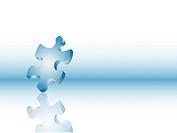 Balancing puzzle piece