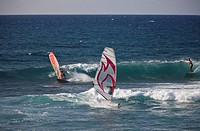 Windsurfer at Hookipa Beach, Maui, Hawaii, USA