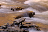 Little River, Great Smoky Mountains National Park, Tennessee, USA