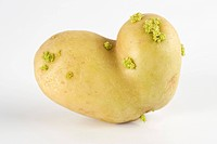 Misshapen potato