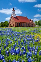 A United Methodist church with bluebonnet wildflowers at Art, Texas, USA