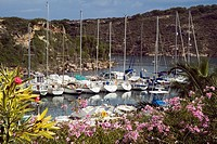 Port dAddaia marina PORT DADDAIA MENORCA Quayside of pleasure boat yachts and pink flowers