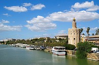 Sevilla Spain Gold Tower by the river Guadalquivir in Seville