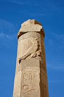 Pillar at Queen Hatshepsut Temple, Luxor, Egypt