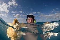 Diver holds Chonch Shell, Strombus gigas, Providenciales, Caribbean Sea, Atlantic Ocean, Turks and Caicos
