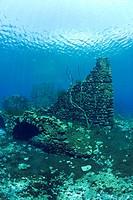 walls of the underwater mills, Lago di Capo d´Acqua, Abruzzo, Italy