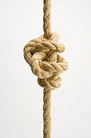Tied knot of a rope