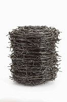 A bundle of Barbed Wire