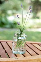Lavender, glass, garden table,