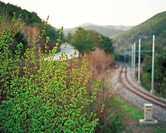rail track and plant