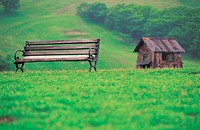 bench and architecture in grassland
