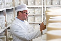 Inspector checking young farmhouse cheddar cheese wheels in cellar