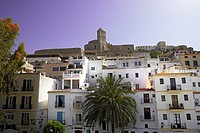 Cathedral in Ibiza  Spain