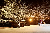 Young couple walking in snow by night