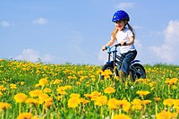 3, 3_year_old, activity, flowers, flower field, flower meadow, blossom, flourish, smell, bicycle, bike, bicycle, bike, go, field, freedom, joy, spring...