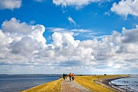 Biker on a dyke, Sylt, Germany, elevated view