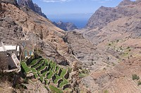 Mountain landscape of the island of San Antao with agricultural terraces, Cape Verde Islands, Africa