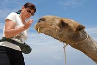 Touristin und Kamel