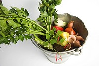 Celeriac and assorted vegetables in bucket