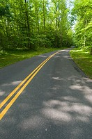 Beautiful scenic country road curves through Great Smoky Mountain National Park