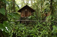 Chalet into rainforest - Tortuguero (thumbnail)