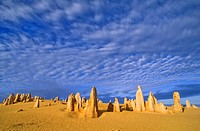 West _ Pinnacles desert