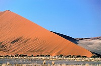 Namibia _ Namib Naukluft park _ Red dunes . Some of the tallest dunes in the world