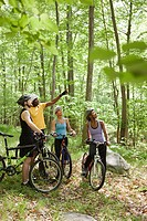 Four cyclists in forest
