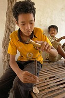 forestry, person, community, cambodia, art, people