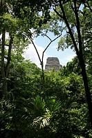 america, mayan, latin, attikal, ruins, guatemala