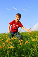 boy playing with bubbles in field of Dandelions, Zuercher Oberland, Zuerich, Switzerland