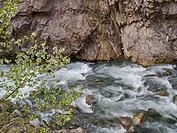 Rapids, Esera River, Congosto de Ventamillo, Pyrenees Mountains, Aragon, Spain