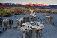 Sunrise over Mono Lake tufas with Sierra mountians in the background