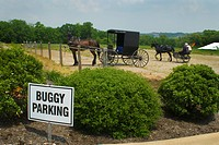transportation, parking, cart, horse, lot, buggy
