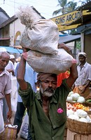 people, india, 5231, person, food