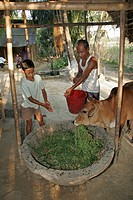 bangladesh, child, kid, children, person, people