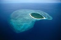 Pulau Sipidan, Borneo.