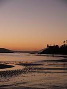 beach beautiful sunset in tofino canada british