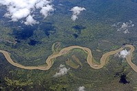 Aerial view of a green lush valley covered by dense jungle and with a brownish river that wriggels snakelike through the highlands of Papua New Guinea...