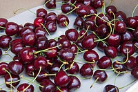 cherries, san giovanni ilarione, italy
