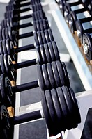 A long row of dumbbells