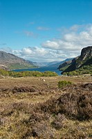 Tollie nr Poolewe Wester Ross Highland Scotland